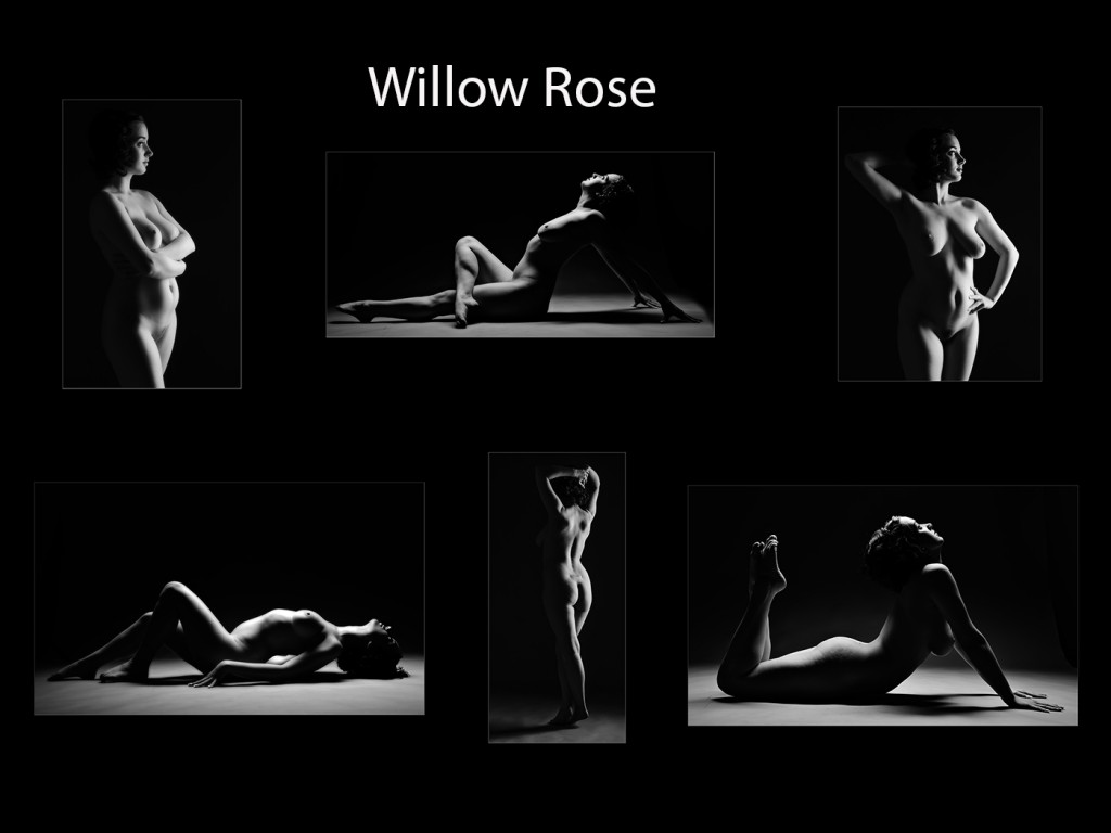 The Winner - Willow Rose by Darren Wellock